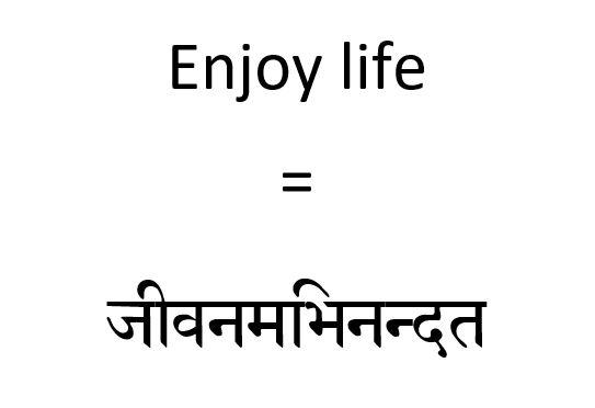 Sanskrit Tattoo Translation of Enjoy Life